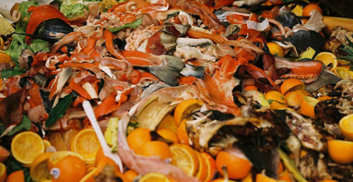mothernaturenetwork:  From food scraps to electricitySupermarkets in Britain are converting food scraps into usable electricity.  Wow! Couldn't we do this in school cafeterias. When the lunchroom serves bad food at least we could keep the lights on longer.