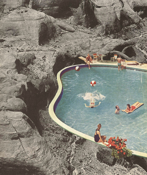 Is This The Place That They Call Paradise?  Jesse Treece