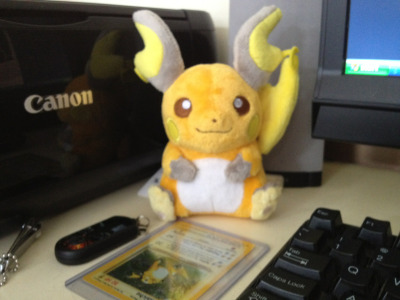 whispwill:  look look Raichu my friend bought me the stupidly rare Raichu canvas plushie!!