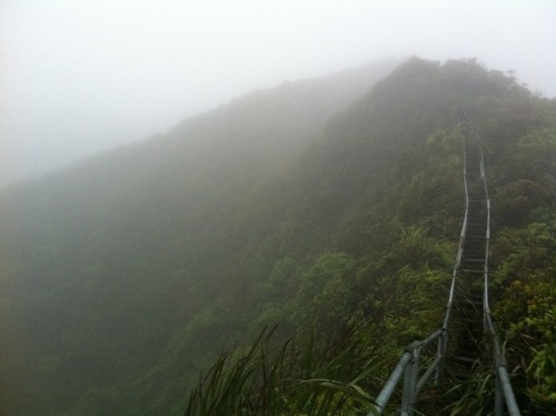 Surviving the Stairway to Heaven in Oahu, Hawaii http://bit.ly/NmvET1