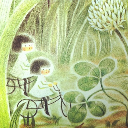 Summer picture book (Taken with Instagram)