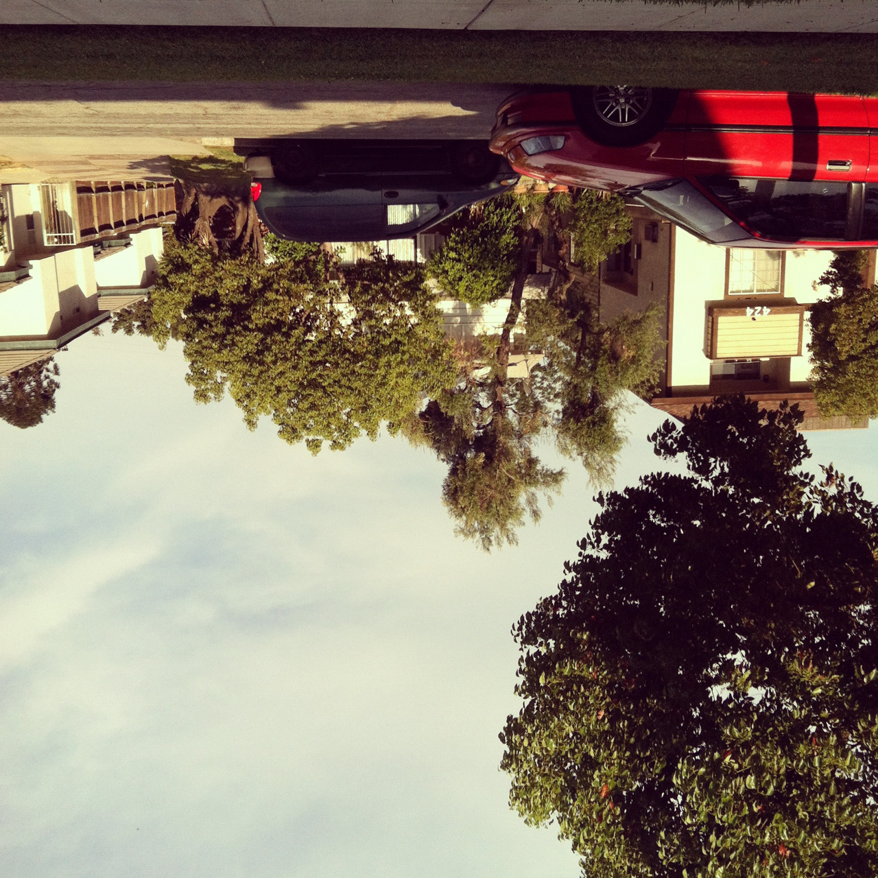 """Upside down"" July 11, 2012. iPhone 4. ©TBailey."