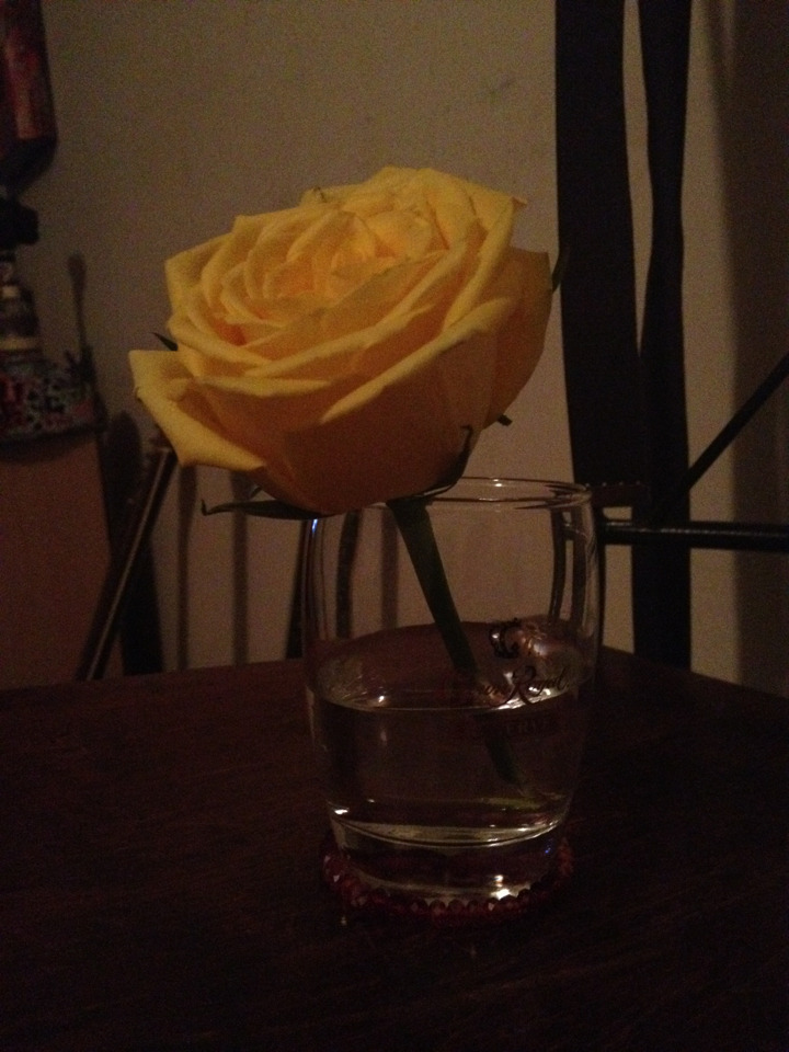 a rose from bobbins service.