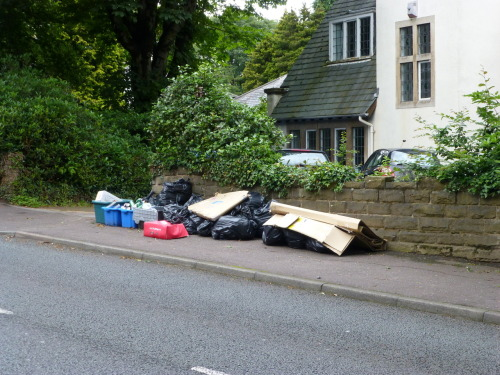 July 13th - This is just a wee reminder about how poor rubbish services are for some folk. The people here, between Four Oaks and Little Aston, live in one of the poshest, most exclusive areas of Birmingham. Sadly, refuse services in the Second City are still third rate; no wheelie bins here. For whatever reason, these bags of waste - recycling and general trash - have been missed and will lie here for another week. Next time you hear someone grumbling about Walsall or Lichfield's bin service, reflect on this.
