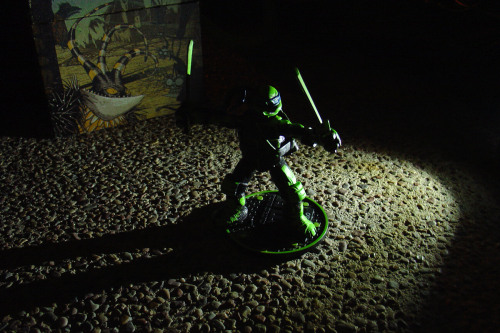 Night Shadow Leonardo — Playmates' TMNT contribution to the SDCC exclusive madness — is among the more difficult items to obtain at SDCC 2012. But before you fall to weeping or resort to eBay, please read this review.