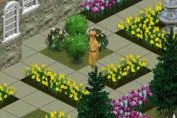 look at my garden! it is full with flower and gardener too
