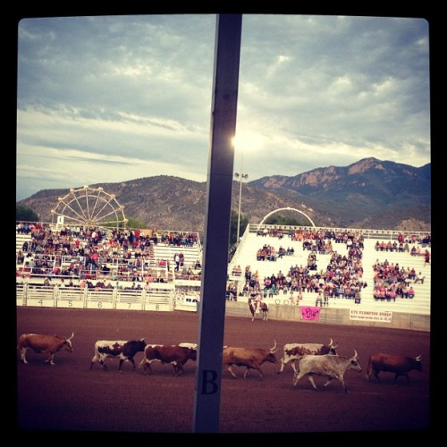 Rodeo time! #utestampede #nephi #utah (Taken with Instagram)