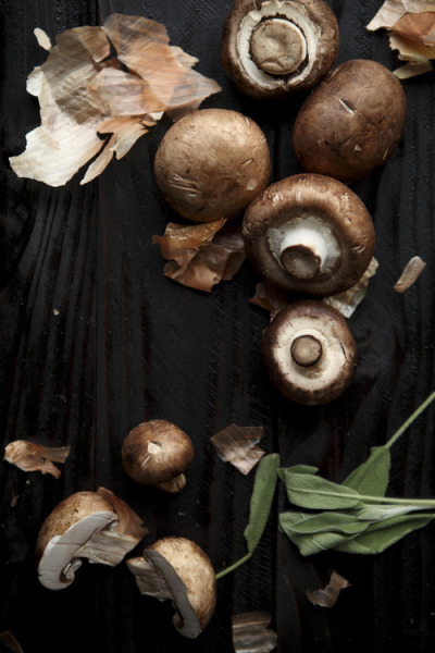 littlefindsforgot:   Mushrooms from the Vale  No.54 of the Food of Westeros series