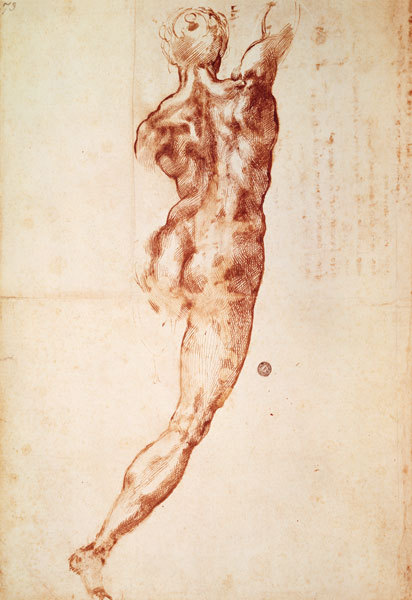Michelangelo Buonarroti Study; Dorsal view of a man Red pencil on paper 1504