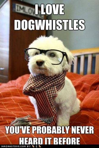 Hipster dog is pretty legit, right?
