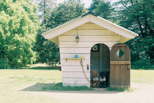 19grizzlybears:  Small house* (by hugxhug)