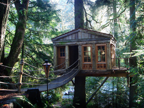 j0urneys:  Tree House by B e t h on Flickr.