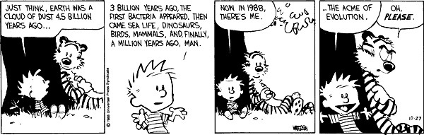 Calvin, the Acme of Evolution.