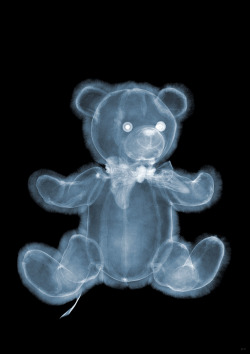 nick veasey: x-ray photography