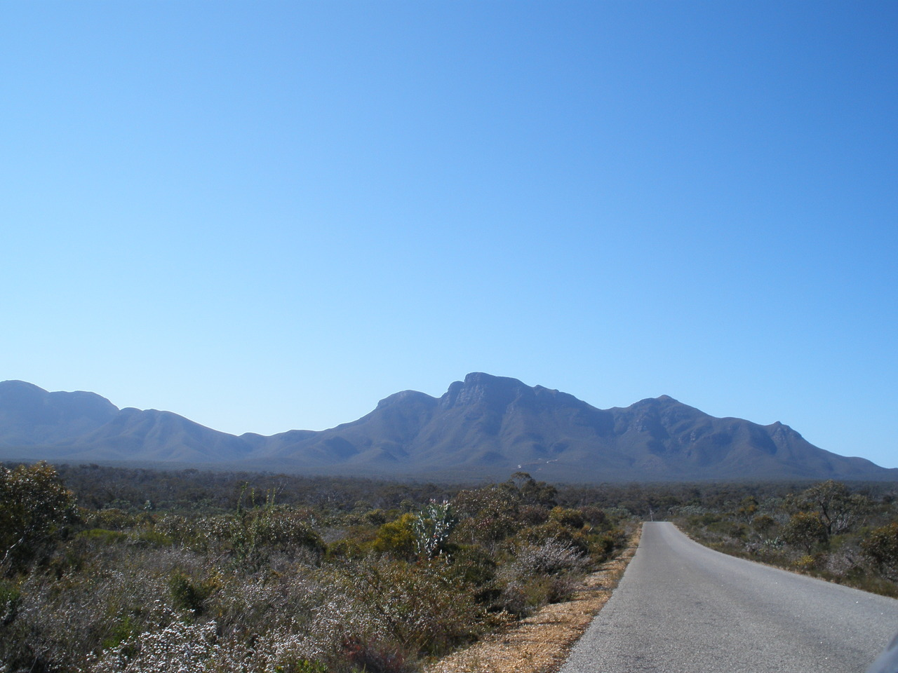 The road to the stirling ranges.