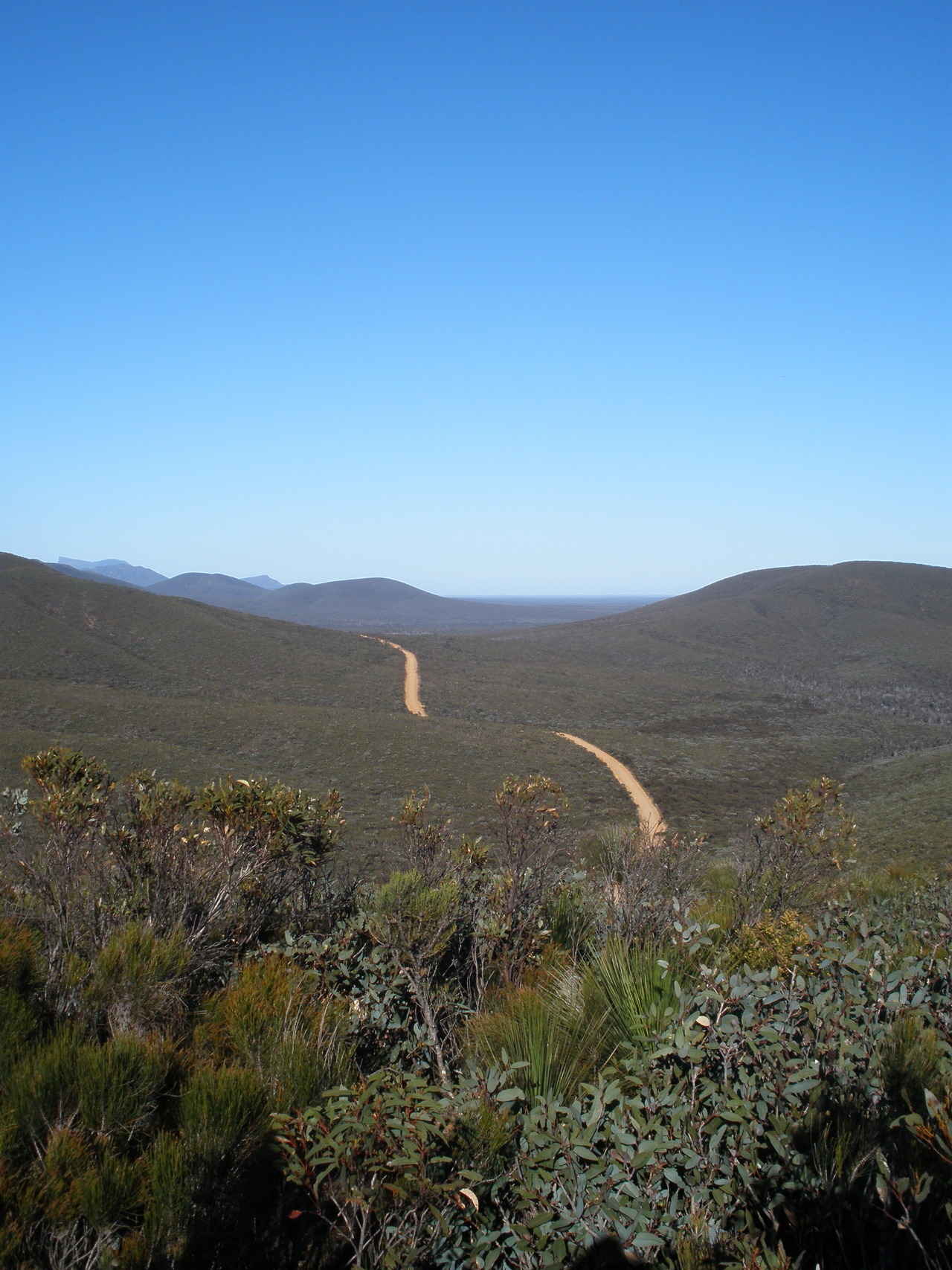 The road of the Stirling Ranges