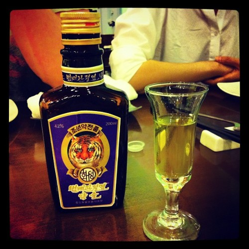 Tiger bone liqueur from North Korea! (Taken with Instagram)