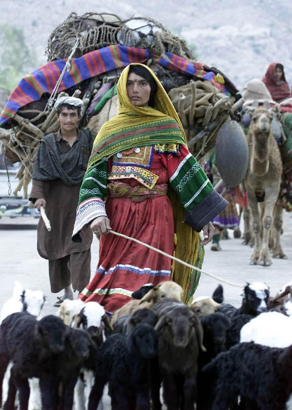 Afghan Nomads travels from Pakistan to Afghanistan as winter approaches.