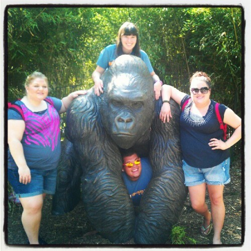 #OklahomaCity #Zoo #Friends #Gorilla #  (Taken with Instagram at The Oklahoma City Zoo)