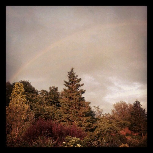 Lovely Scottish 'summer'… at least we get rainbows? (Taken with Instagram)
