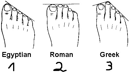 shannosaurr:  Greek!  My feet are Greek :P