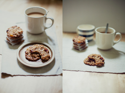 fruit maple oat cookies (by sjwalton.com)