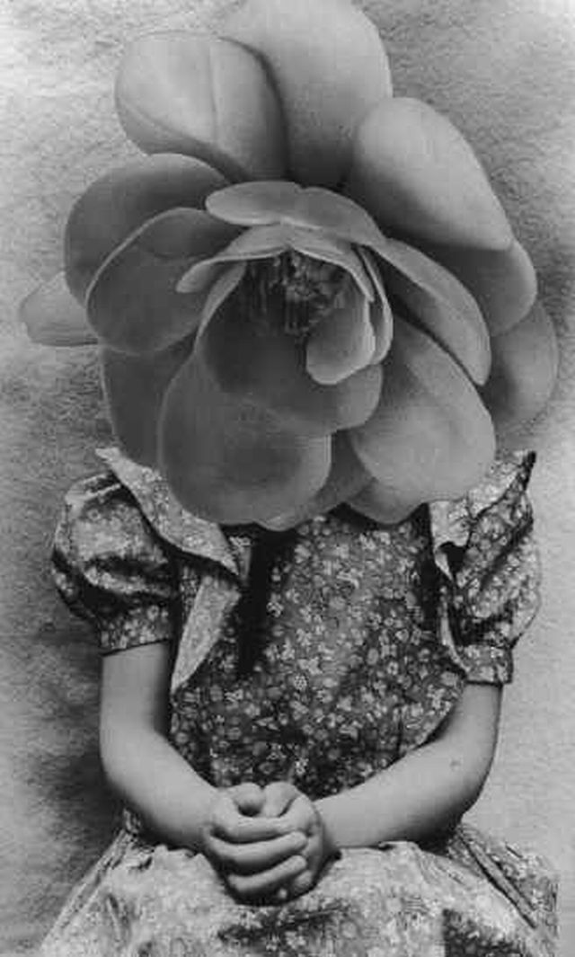 Mari Mahr Rose head