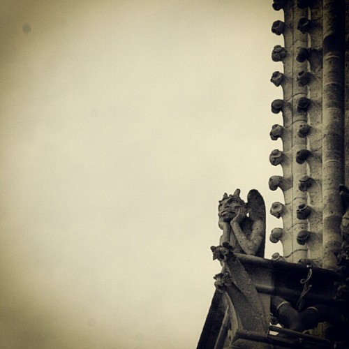 #photoadayJuly Day 14: Building —- Notre Dame de Paris (possibly my favorite in the world). #paris #building #notredame #notredamedeparis #gargoyle #gargoyles #architecture #france #sky  (Taken with Instagram)