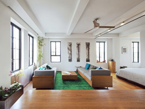 (via Creative and Flexible Apartment Coping with the Frenzy of New York City | Freshome)