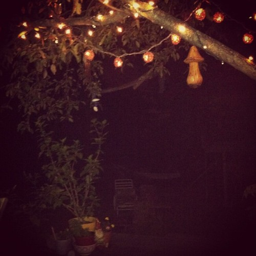More #backyard #tree #lights #gnomes #deck #weee  (Taken with Instagram)