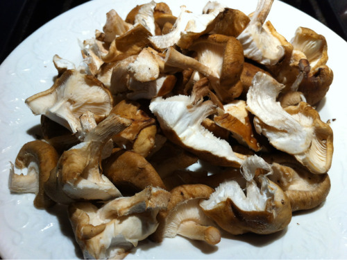 Fresh mushrooms from the farm CSA for dinner tonight.
