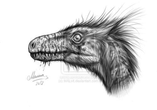 fuckyeahdinoart:  Head of Dromeosaurus by ~MALvit