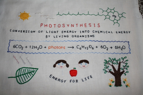 Photosynthesis by de Sade's Kitten on Flickr.