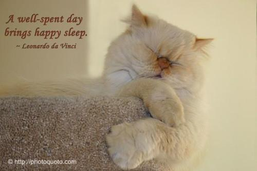 A well-spent day brings happy sleep. ~Leonardo da Vinci