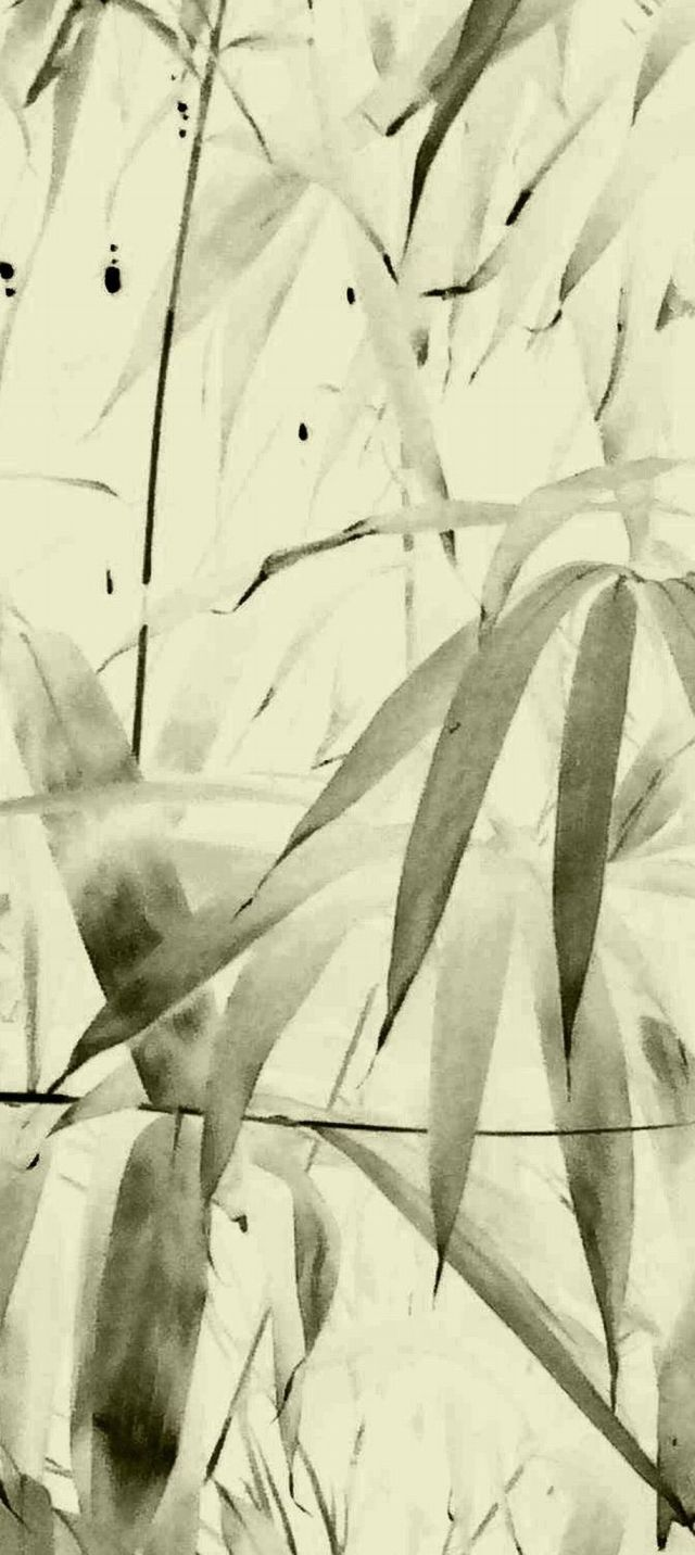 ©yama-bato ,Bamboo 3 ,2011 Claude Monet's garden at Giverny By yama-bato
