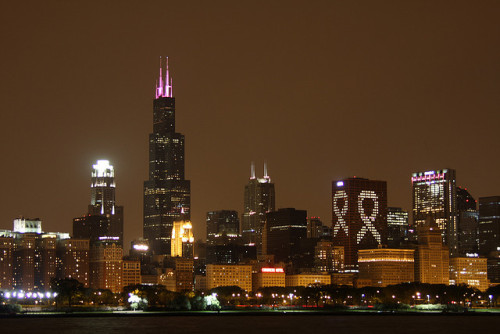 Chicago bei Nacht - vom Planetarium by meironke on Flickr.
