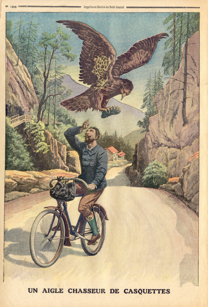 pedalarepedalare:  One of the hazards of cycling - giant birds   Bahaha!