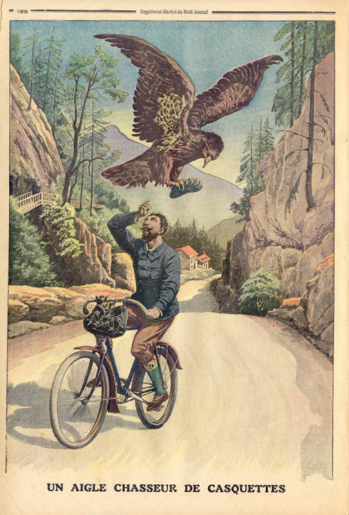 majortaylortalk:  One of the hazards of cycling - giant birds