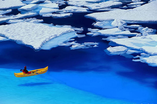 Floating in Blue, Glacier Bay, Alaska photo via lover