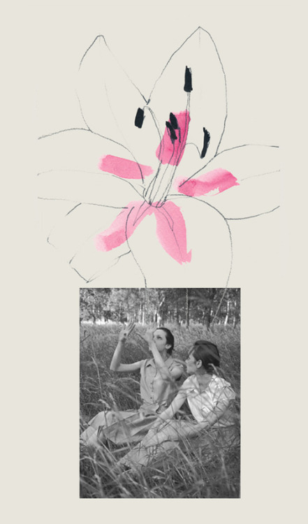 Lily + Juergen Blog Post: Field Day for the Sundays  « Illustration by Decade Diary
