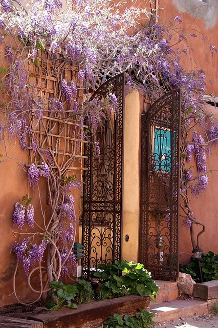 bluepueblo:  Wisteria Entryway, Isle of Crete, Greece photo via sipa