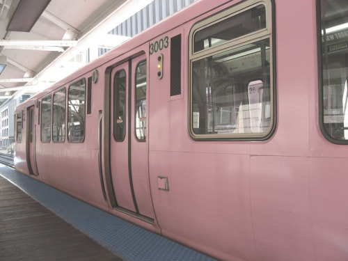 view-from-up-here:  pink subway!