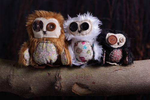 Beautiful photography by Rob Flynn. Milly, Molly and Mandy Owls.  www.etsy.com/shop/toxicnoodle