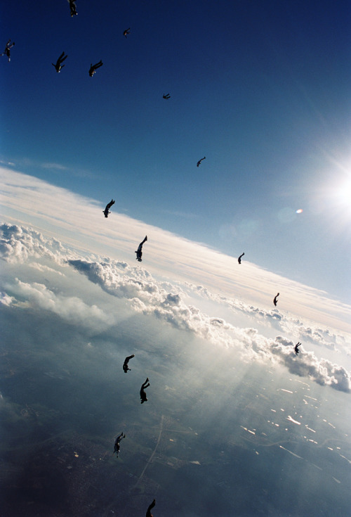 geniusofthehole:  Skydive (by Rick Neves)
