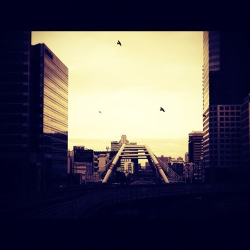 #sky#building#bangkok#thailand#railway#skywalk#birds#fly (Taken with Instagram)