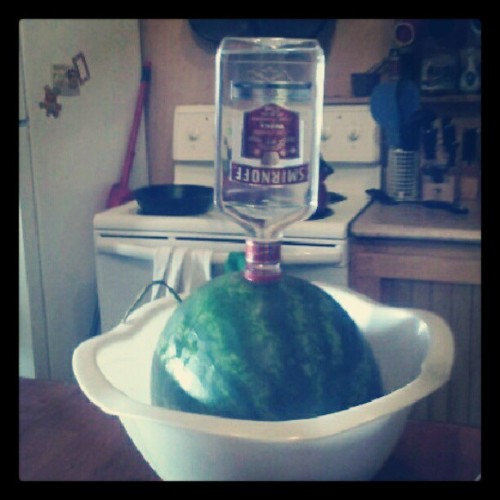 Osmosis in action. #vodka #watermelon #birthday #party (Taken with Instagram)