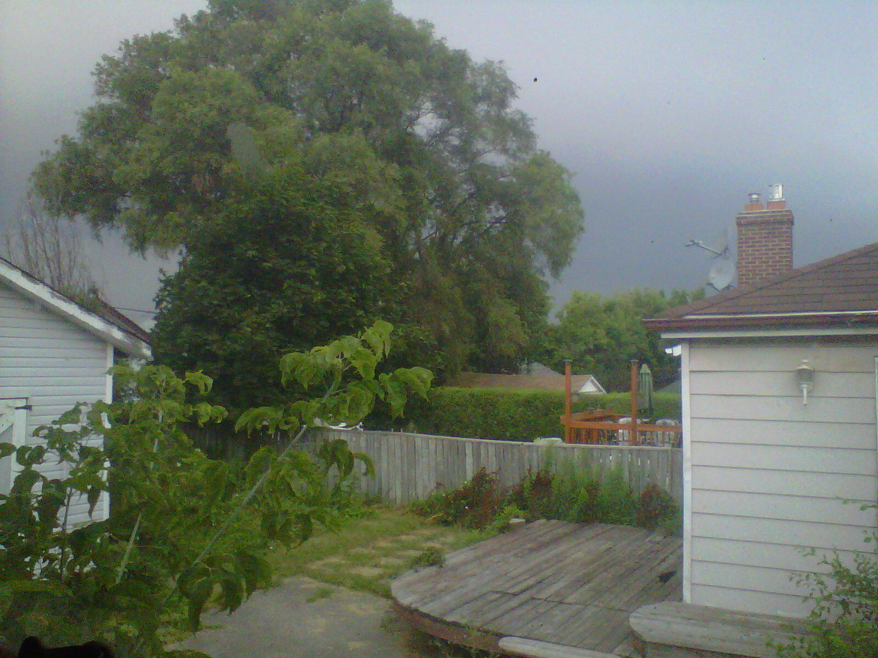 We're in for a good thunderstorm, I think. I've been hearing rumbles for about 15 minutes now, but no rain has fallen yet. I'm just hoping it cools down.