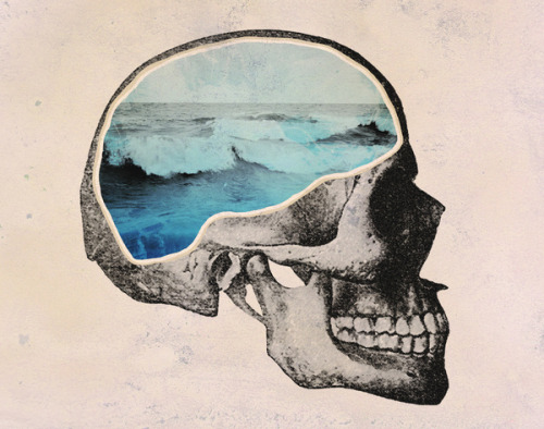 Brain Waves by Chase Kunz