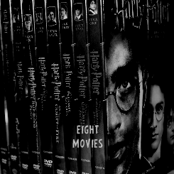 harrypotter-photosets:  the Harry Potter saga