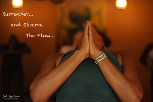 ~ Surrender and Observe The Flow ~